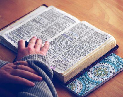 Étude biblique oecuménique