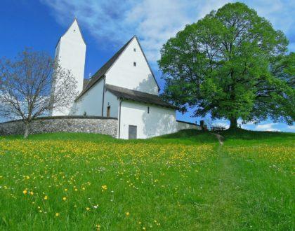 Engagement de notre paroisse dans la démarche Église Verte